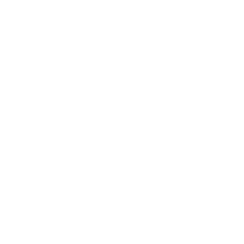 Canon – Fast Business